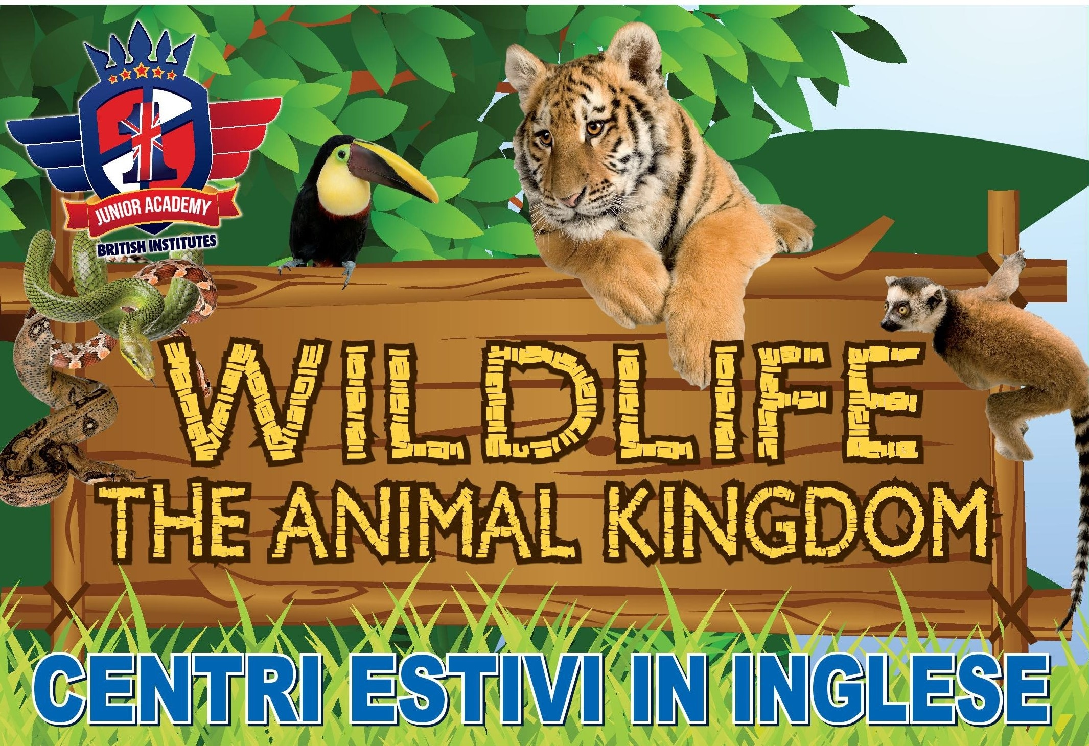 Wildlife Summer Camp