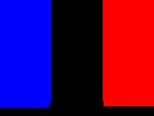 Bandiera Francese Maple Academy Associazione Culturale Per La